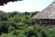 View from Zanzibar Hut over forest